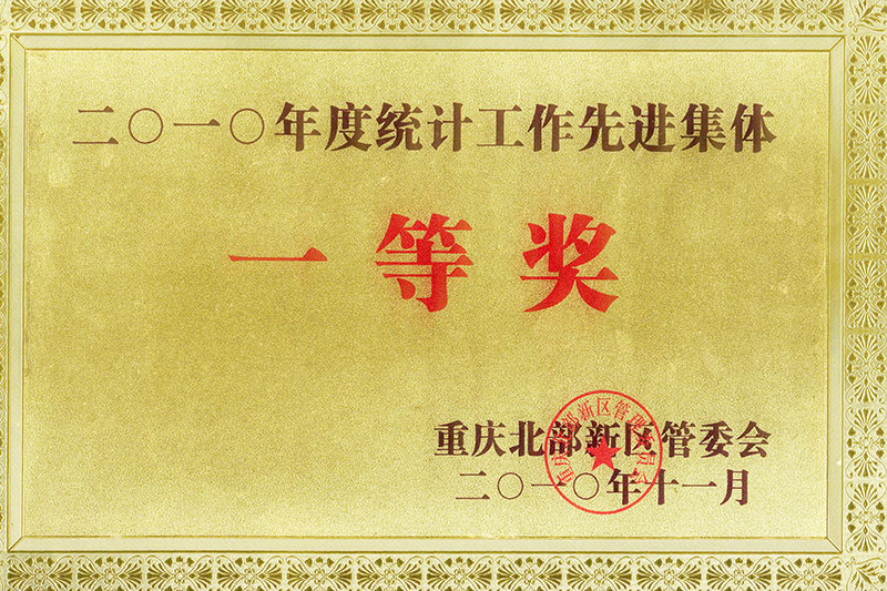 2010年统计工作先进集体一等奖